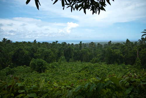 Pulemelei Mound View